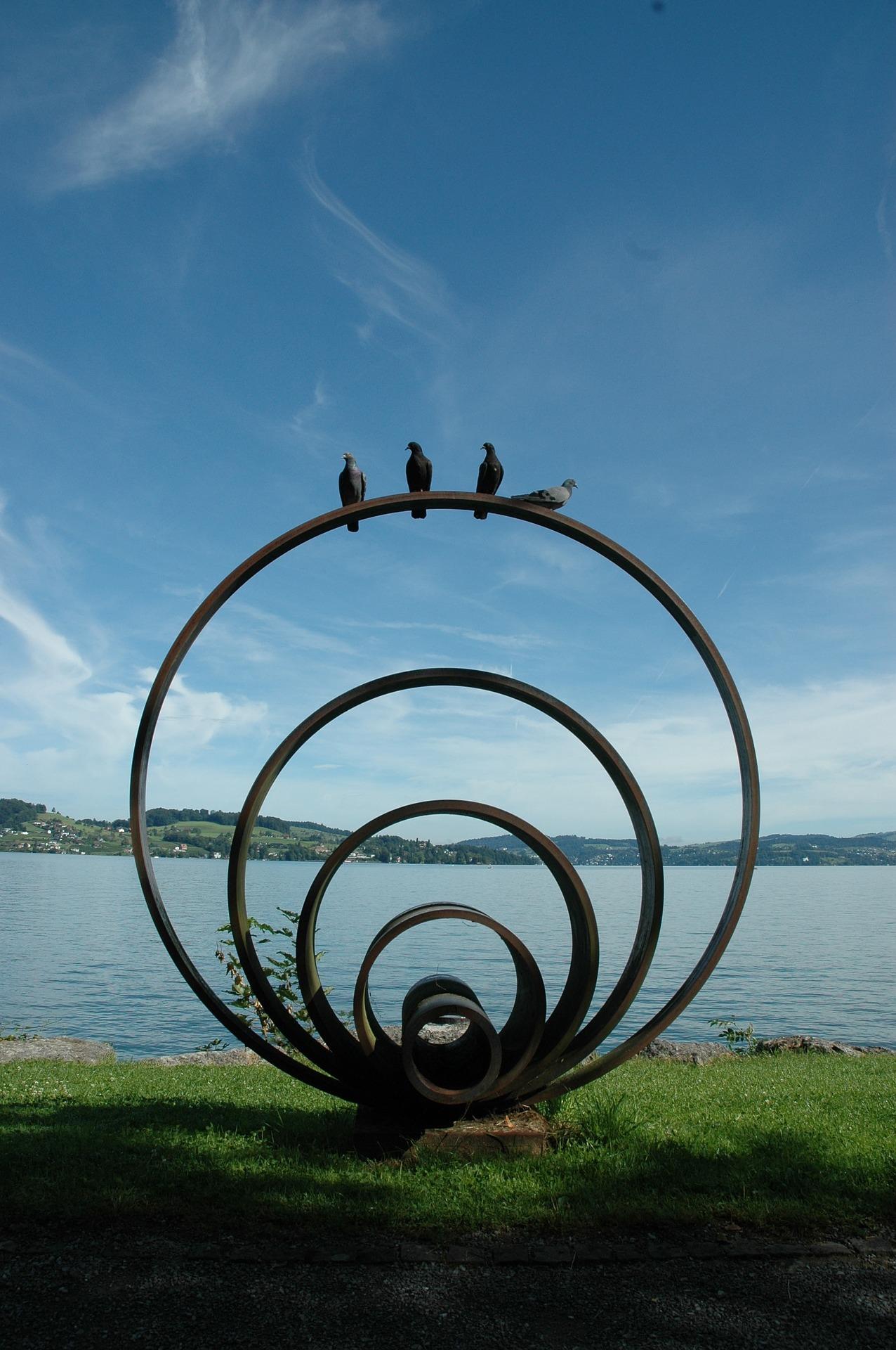 pigeons-744303_1920